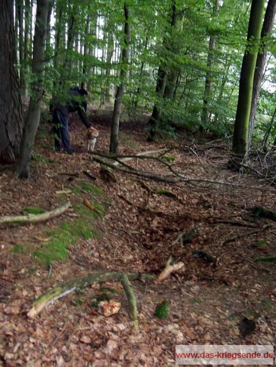 Eine der noch sichtbaren Schützenmulden. Vor rund 20 Jahren waren noch sehr viel mehr der ehemaligen Verteidigungsstellungen in den Wäldern sichtbar, doch die Natur holt sich langsam zurück, was ihr gehört.