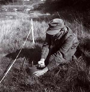 Ein deutscher Soldat beim Entschärfen einer Schützenmine S-Mine 35. Bildquelle: Google Bildersuche.